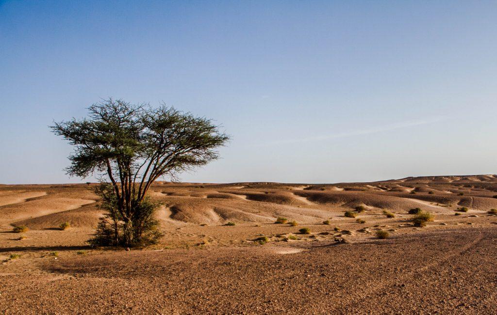 Vakantie Marokko 2017